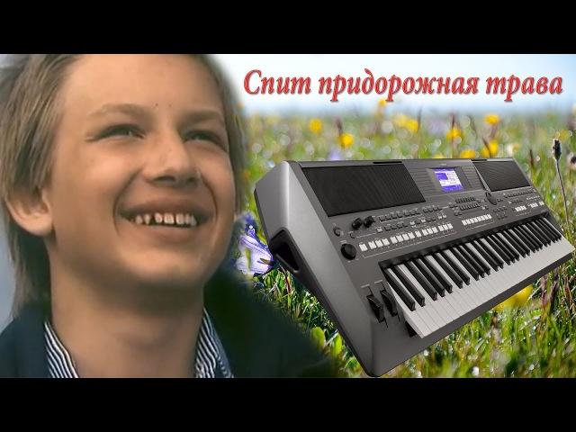 Спит Придорожная Трава из к\ф Выше Радуги на синтезаторе Yamaha psr s670