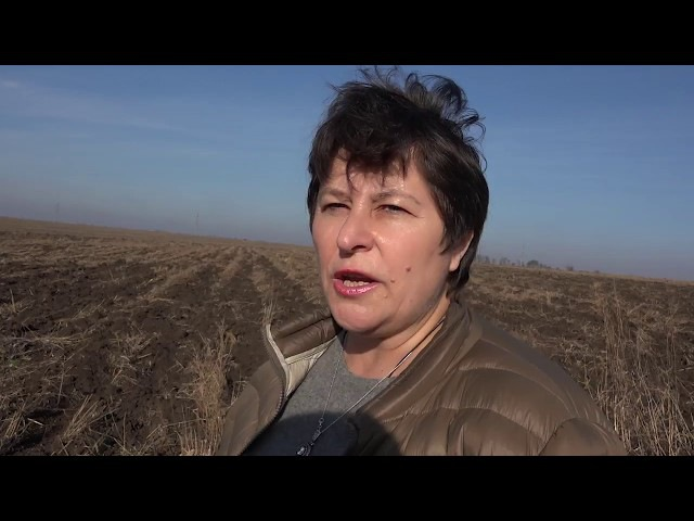 Менты и прокурорские отжимают землю под Мариуполем