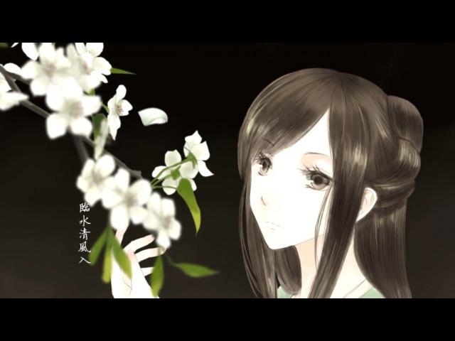 Wang Chao【Luo Tianyi】- 梨花雨 (Líhuā Yǔ)