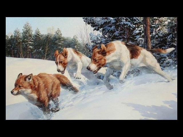 Охота на лису с гончими
