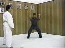 Okinawan White Crane - The Masters Series Tape 3 Gohoken