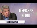 Юрий Жуков Медведев и Захарова извинялись перед Земаном в традициях Горбачёва