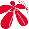 Интернациональный центр Mimosa
