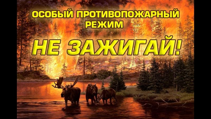 Не зажигай