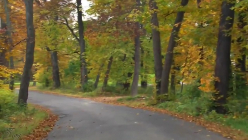 Раймонд Паулс - Дорога в осень
