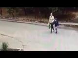 Авто сбивает мать с ребенком на