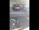 девушки мне моют машину