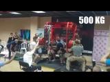 Влад Алхазов (Израиль), присед в бинтах - 500 кг + тяга - 385 кг и 395 кг 💪💪💪