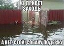 Александр Янков фото #1