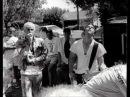 Operation Ivy- Bankshot