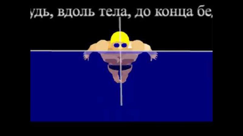 Техника плавания способом delfin