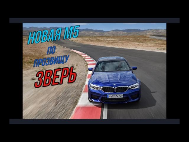 BMW M5 F90 - вершина пищевой цепочки автомобильного мира