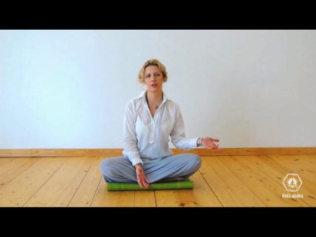 лекция с проекта Йога -волна Осознанность это раскрученный термин или достижимая реальность