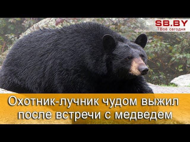 Охотник-лучник чудом выжил после встречи с черным медведем