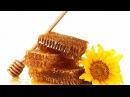 Как проверить мед на подлинность