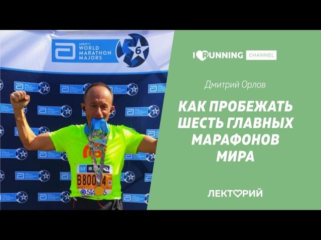Как пробежать 6 главных марафонов. Дмитрий Орлов в Лектории I LOVE RUNNING