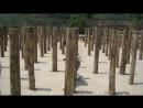 Тренировки монахов Шаолиня