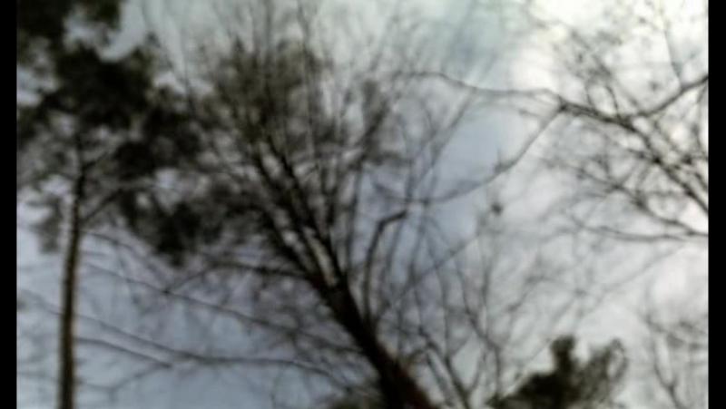 Транс   Transe   Италия, Россия, Франция, Португалия, 2006   реж. Тереза Виллаверде