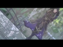 MMD seven knights .--Deep sea girl--. [MME test].mp4