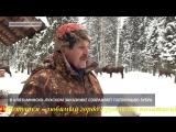 Прямая Речь. Василий Никитин, эксперт дирекции ООПТ