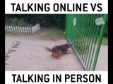 Dogs Talk A Big Game With No Action ))