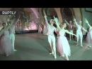 Кремлёвского балета выступили на станции «Новослободская» Московского метропо