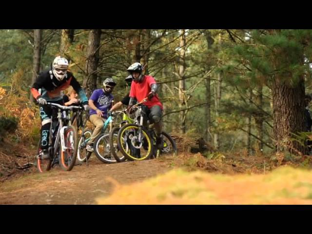 Downhill VTT Pays Basque | Bike Experience