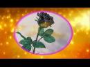 Черная роза, часть 1