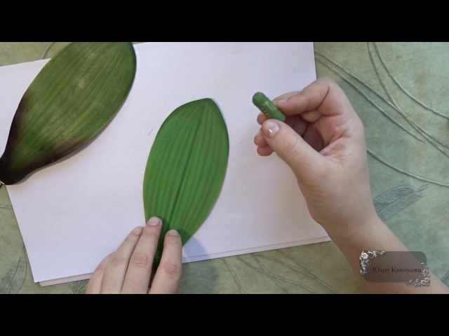 Мастер класс Листья орхидеи из фоамирана Автор Юлия Козьякова