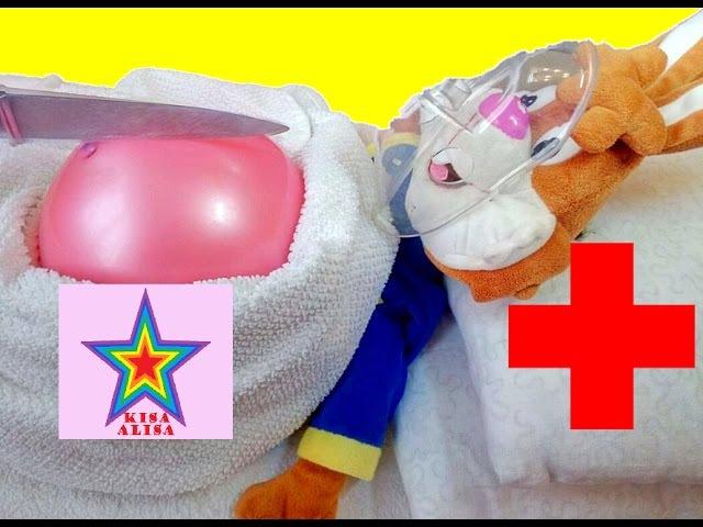 МЕДИЦИНСКАЯ ОПЕРАЦИЯ РЕЖЕМ ЖИВОТ КРОЛИКУ KISA ALISA MEDICAL OPERATION CUT THE BELLY OF THE RABBIT