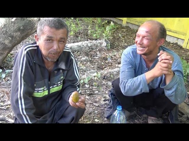 СЪЕЛ 3x ЛИТРОВУЮ БАНКУ ОГУРЦОВ за 500 РУБЛЕЙ