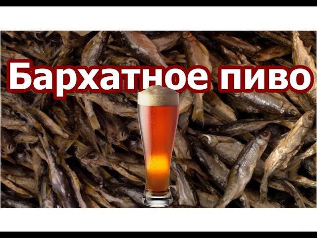 🍺 ► Бархатное пиво ◄ ▶️ Самогонщик Тимофей