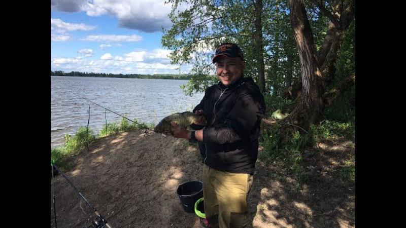 Рыбалка - Ловля КАРПА в Егорьевском районе ( пруд 6 )