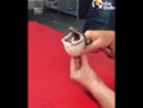 Ветеринары помогают змее