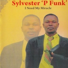 Sylvester P Funk - Trust in God
