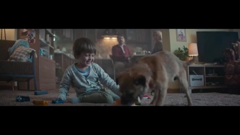 Не бросайте животных!Спасение или предательство?(социальная реклама).