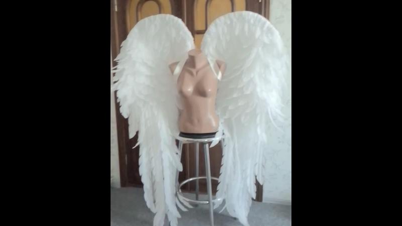 заказ крыльев ангела от Мальвади