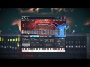 Develop Device - DESCENT - MusicLab RealEight / Progressive metal / Djent