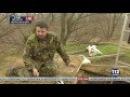 Черные археологи ограбили скифский курган в Черкасской области