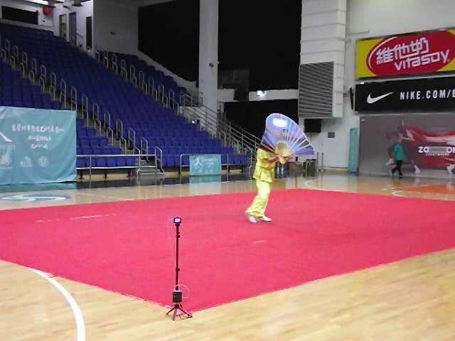 中國香港傳統武術總會 世界肝炎日 武術大匯演 12