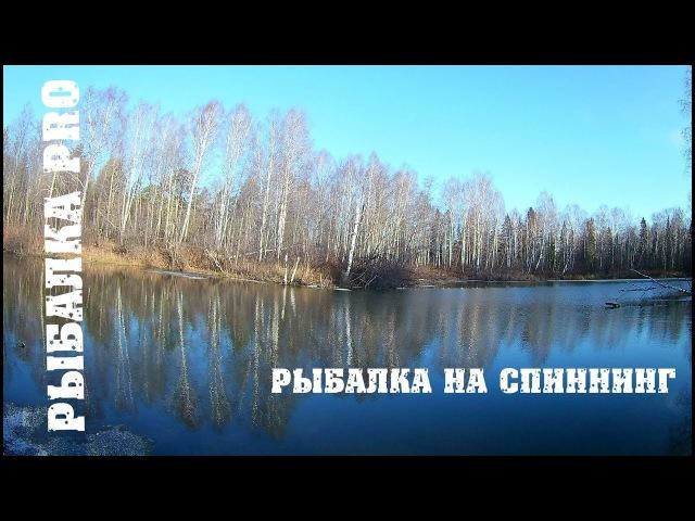 Рыбалка на спиннинг Отвратительное закрытие сезона