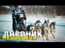 Хаски Гонки на упряжках Алтайские горы Манжерок Дневник Медведева