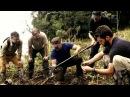 В поисках сокровищ змеиный остров 2 сезон 1 серия Discovery