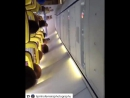 Фанаты Порту поют прямо в самолете