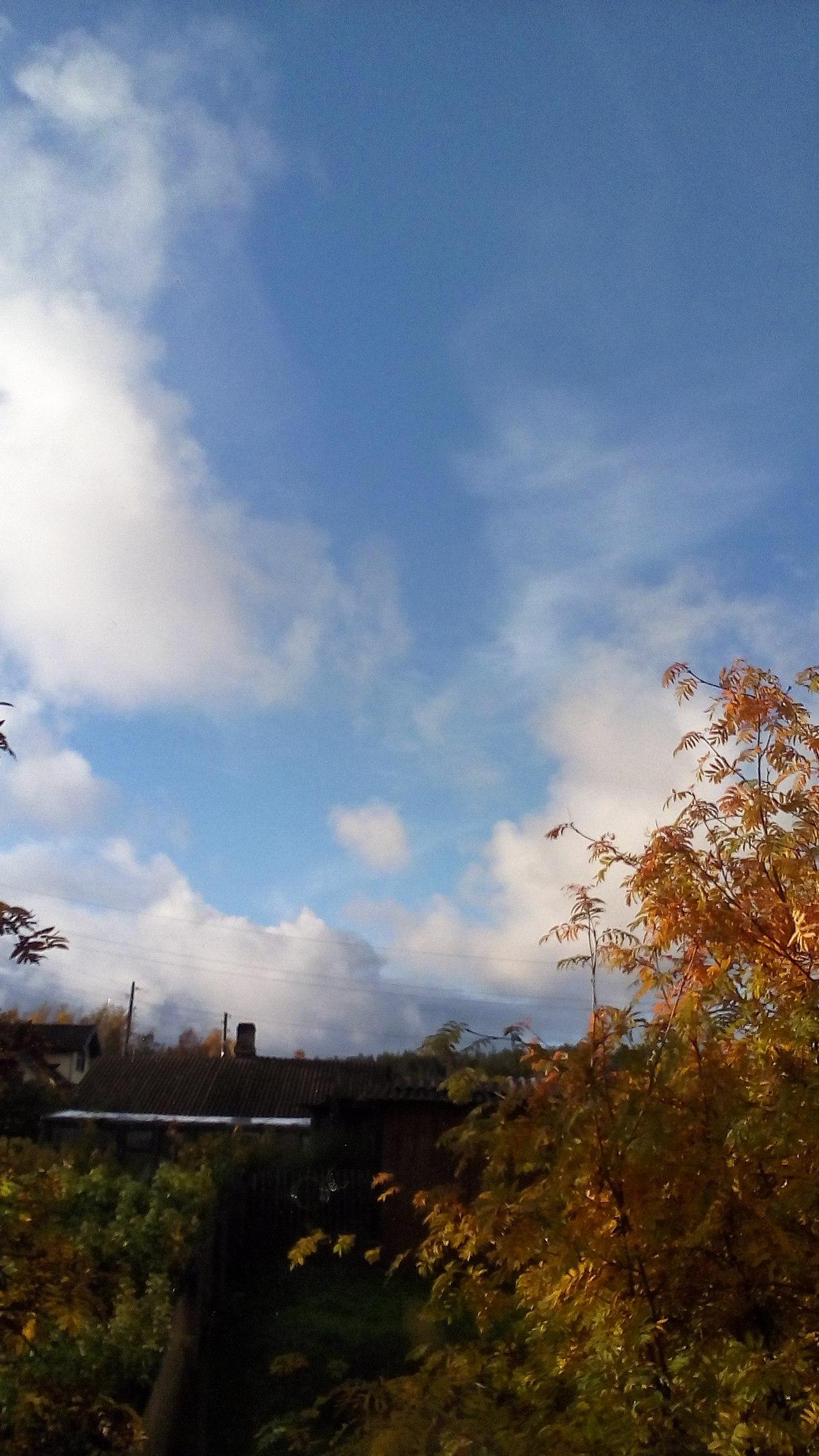 Замечательный,красивый сегодня день.