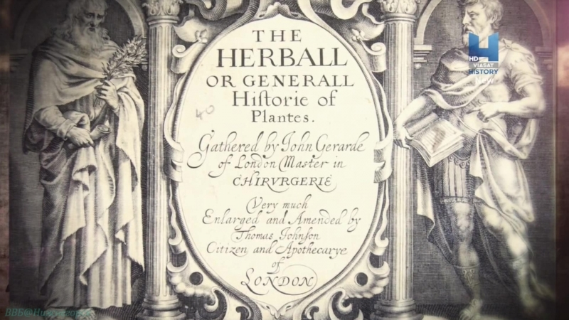 «Частная жизнь Тюдоров (2). Генрих VIII Тиран на троне» (Познавательный, история, 2016)