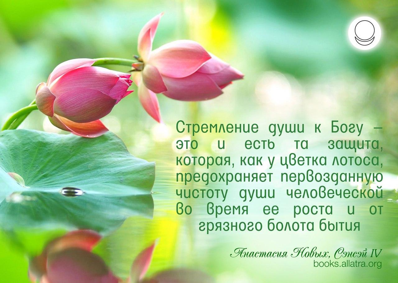 https://pp.userapi.com/c639119/v639119514/11fb3/-uU9Yk3qOco.jpg
