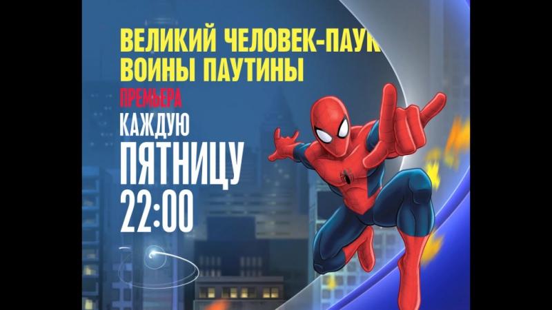 «Великий Человек-паук: Воины паутины»