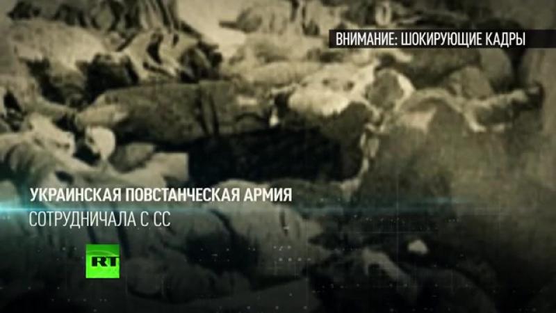 Ностальгия по фашизму_ украинский ветеран в прямом эфире рассказал о «прекрасном