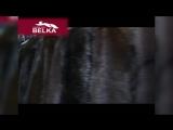 ВСЁ ОБО ВСЁМ - Выставка меховой компании Белка